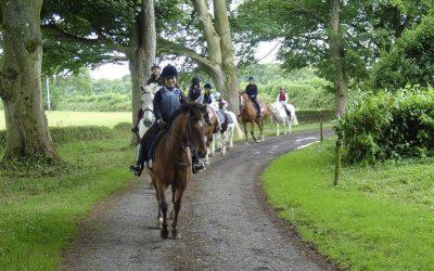 Programa de inglés y de equitación en Irlanda